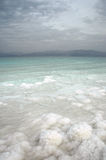 Salzbildungen des Toten Meers stockfotos