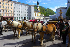 Salzburg Österrike - Maj 01, 2017: Centralt ställe i den Salzburg staden med vagnar och hästar Arkivbilder