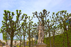 Salzburg Österrike - Maj 01, 2017: En del av den härliga Mirabellen arbeta i trädgården i Salzburg Royaltyfria Bilder