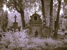 Salzburg-Friedhofinfrarot Stockfotos