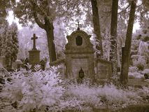 Salzburg graveyard infrared stock photos