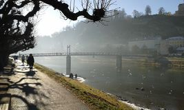 Salzburg. New Year`s Day in Salzburg. Walk along misty river with bridge in background Royalty Free Stock Photography