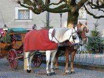 Salzeburg奥地利、马和支架 免版税库存照片