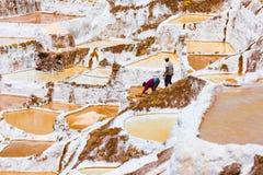 Salzen Sie Sammlung in den terassenförmig angelegten Becken von Moray Peru lizenzfreies stockbild