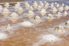 Salzen Sie Sammlung am Salzbergwerk von Trapani in Sizilien Lizenzfreie Stockfotos