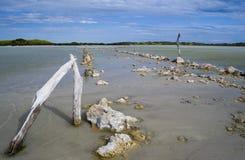 Salzen Sie Sumpfland lizenzfreies stockfoto