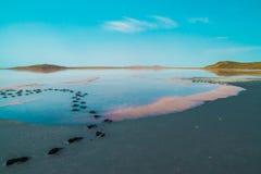 Salzen Sie Teich mit orange Flecken und blauem Himmel des freien Raumes Lizenzfreie Stockfotos