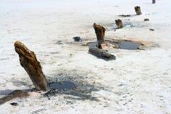 Salziger See Stockfotos