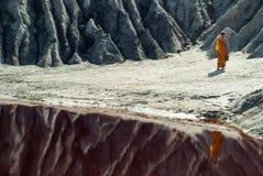 Salziger See in der Wüste stockfotografie