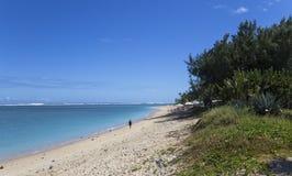 Salziger Strand des La, La Reunion Island, Frankreich Stockbilder
