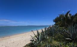 Salziger Strand des La, La Reunion Island, Frankreich Lizenzfreie Stockfotografie