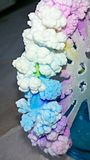 Salzkristallisation Lizenzfreie Stockfotografie