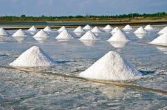 Salzlebensmittel in den Tropen Lizenzfreie Stockfotografie