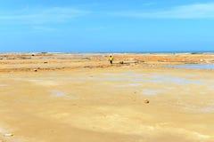 Salzproduktion auf Guakhirs Halbinsel lizenzfreie stockfotos