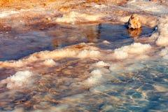 Salzufer des Toten Meers Stockbild