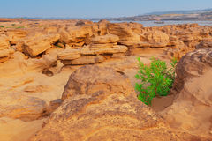 Sam Pan Bok Grand Canyon of Thailand Stock Images