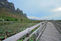 Sam roi yod, national park, thailand. Sam roi yod national park, prachupkerekhan, thailand Stock Photos