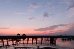 Sam Roi Yot Freshwater Marsh immagini stock libere da diritti