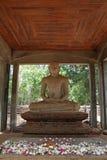 Samadhi菩萨在阿努拉德普勒 库存图片