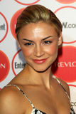Samaire Armstrong Royalty Free Stock Photography