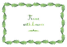 A samambaia da aquarela deixa o quadro (verde) do vetor com o texto escrito à mão ilustração stock
