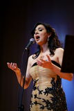 Samar Kammouj Konzert lizenzfreies stockbild