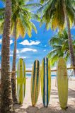 Samara, Costa Rica, June, 26, 2018: Outdoor view of surfboard and palm tree on beach background in a gorgeous sunny day. And with blue sky and blue water in stock photography