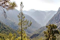 Samaria峡谷  免版税库存照片