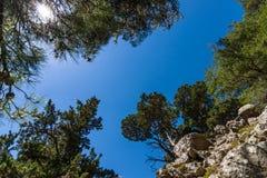 samaria νησιών της Ελλάδας φαραγγιών της Κρήτης Στοκ Εικόνες