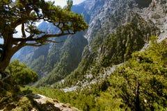 samaria острова Греции gorge Крита Стоковое Фото