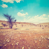 Samaria Stock Photography