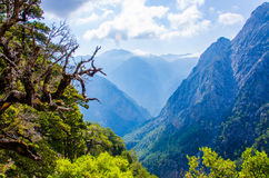 Samaria Canyon Crete Stock Photography
