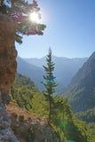 samaria gorge Стоковые Фото