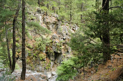 Samaria Gorge Royalty Free Stock Images