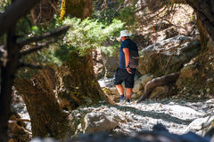 Samaria Gorge in central Crete, Greece Royalty Free Stock Photography