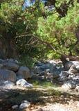 Samaria Gorge, Eiland Kreta, Griekenland royalty-vrije stock foto