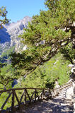 Samaria Gorge, Eiland Kreta, Griekenland Royalty-vrije Stock Fotografie
