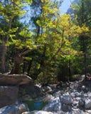 Samaria Gorge, Eiland Kreta, Griekenland Royalty-vrije Stock Foto's