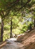 Samaria Gorge, Eiland Kreta, Griekenland stock foto