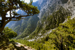 Samaria Gorge. Stock Photo