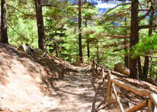 Samaria Gorge, island of Crete, Greece Royalty Free Stock Image