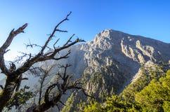 Samaria Gorge Kreta, Grekland Royaltyfria Foton