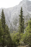 Samaria Gorge Stock Photography