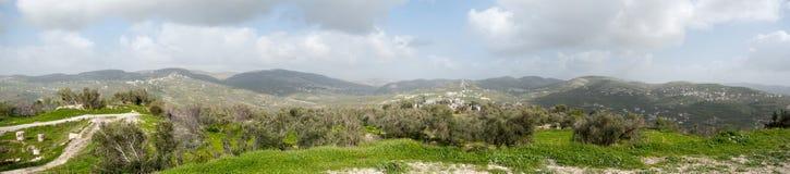 Samaria panorama. Wide angle panorama of rural samaria (Shomron) landscape in Israel and Palestine autonomy royalty free stock image