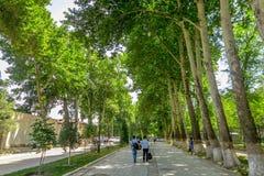Samarkand-Hochschulboulevard-Park 03 stockfoto