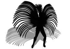 Samba Royalty Free Stock Image