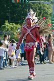 Samba carnival dancer Stock Photos