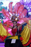 Samba dancer Royalty Free Stock Images