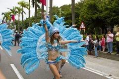 2013 samba dream carnival parade Stock Photography