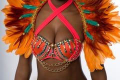 Samba tancerz, zbliżenie strzał Fotografia Stock